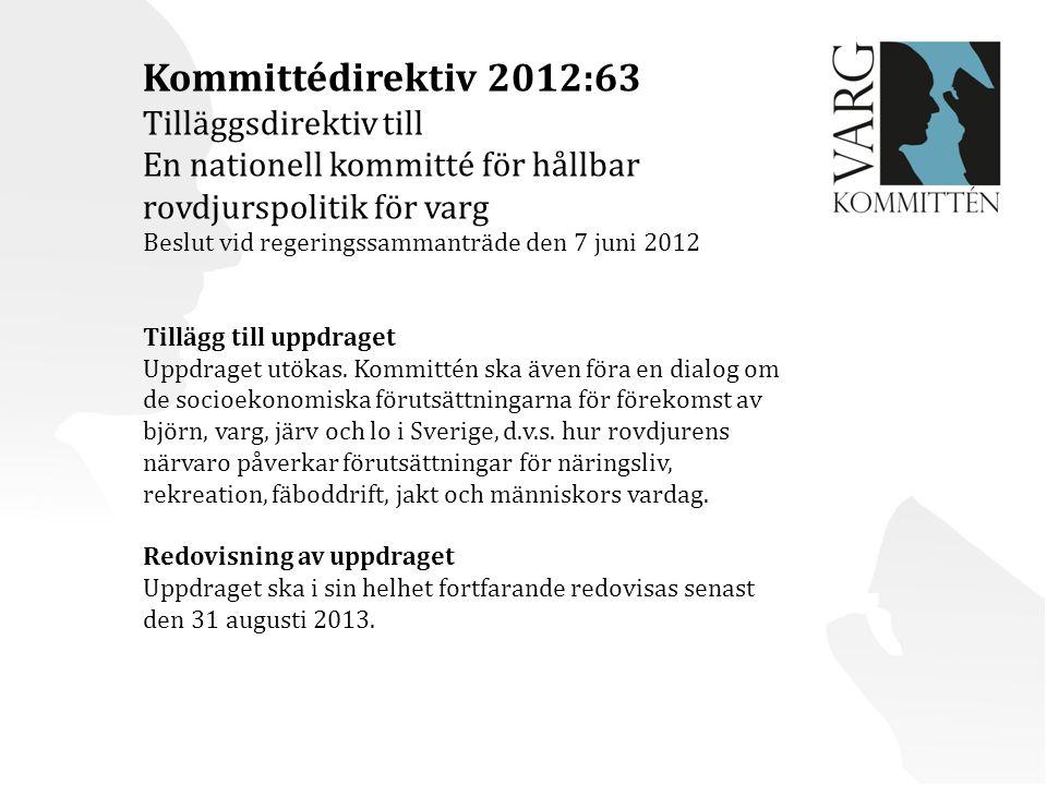 Kommittédirektiv 2012:63 Tilläggsdirektiv till