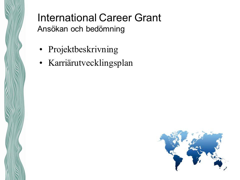 International Career Grant Ansökan och bedömning