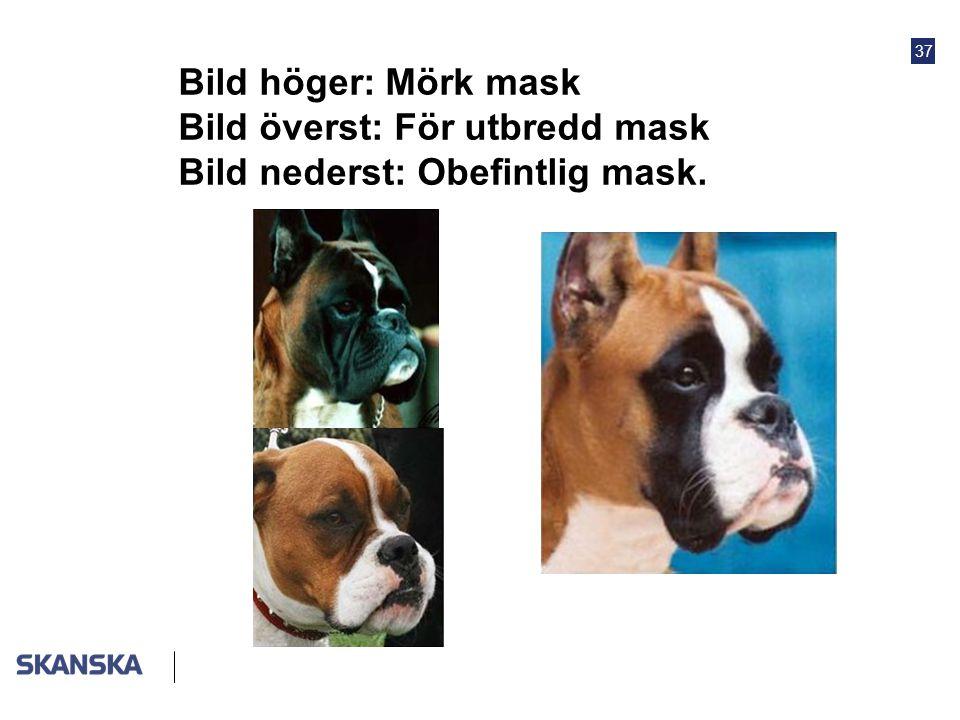 Bild höger: Mörk mask Bild överst: För utbredd mask Bild nederst: Obefintlig mask.