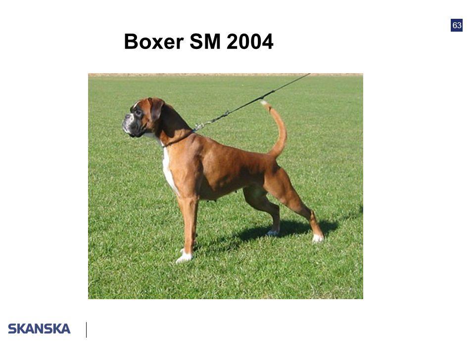 Boxer SM 2004