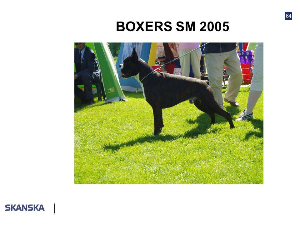 BOXERS SM 2005