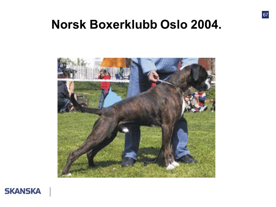 Norsk Boxerklubb Oslo 2004.