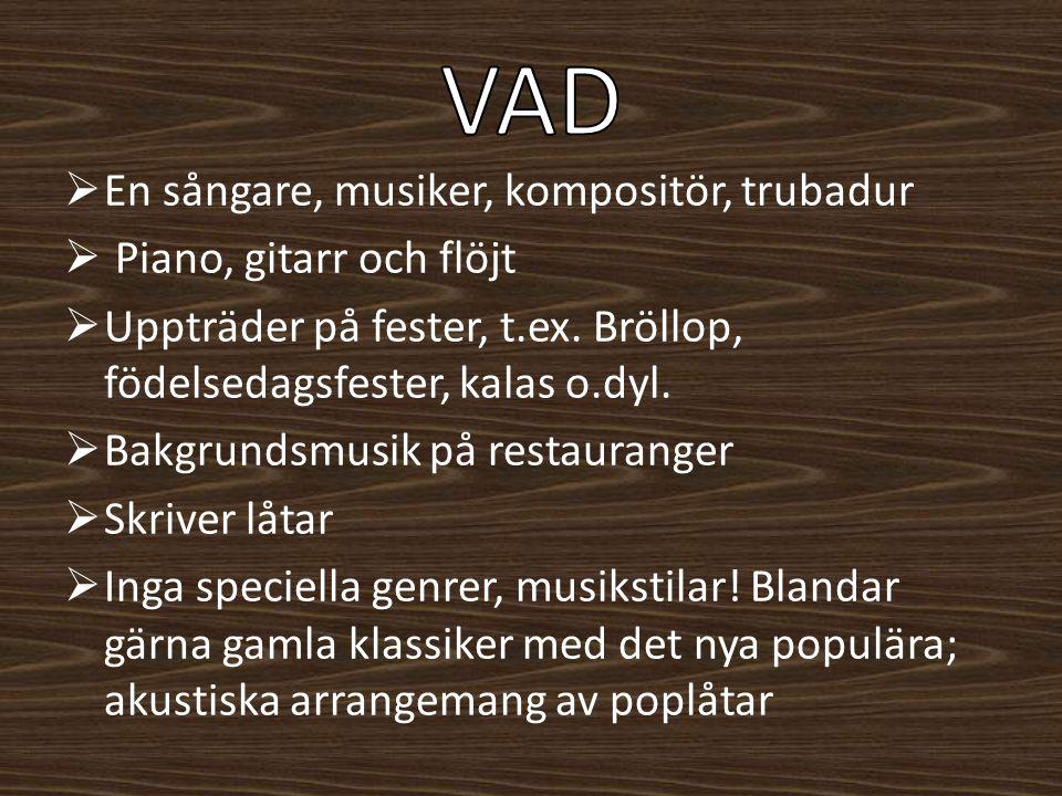 VAD En sångare, musiker, kompositör, trubadur Piano, gitarr och flöjt