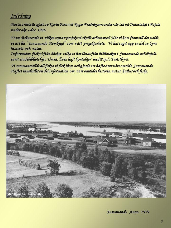 Inledning Detta arbete är gjort av Karin Fors och Roger Fredriksson under vår tid på Datorteket i Pajala under okt. - dec. 1996.