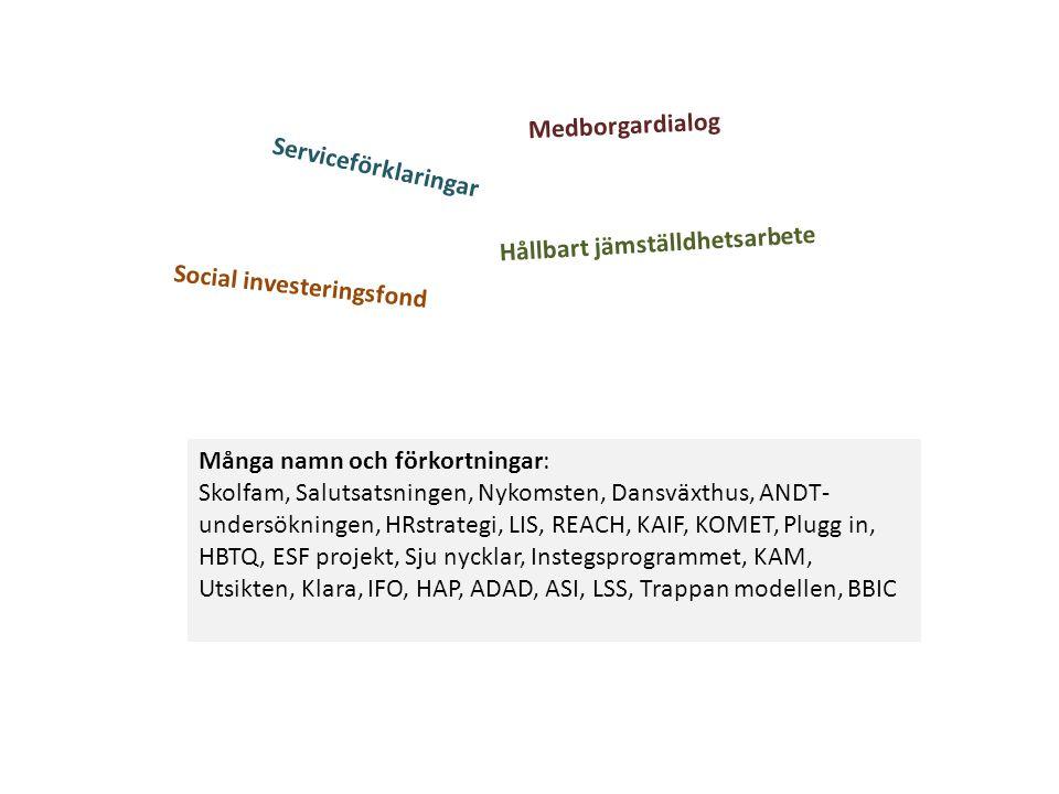 Medborgardialog Serviceförklaringar. Hållbart jämställdhetsarbete. Social investeringsfond. Många namn och förkortningar: