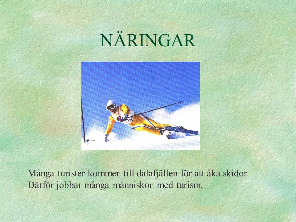 NÄRINGAR Många turister kommer till dalafjällen för att åka skidor.