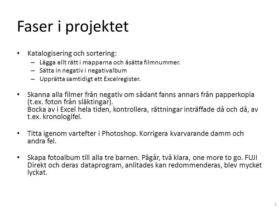 Faser i projektet Katalogisering och sortering: