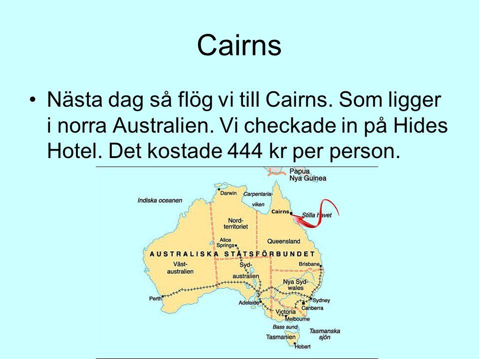 Cairns Nästa dag så flög vi till Cairns. Som ligger i norra Australien.