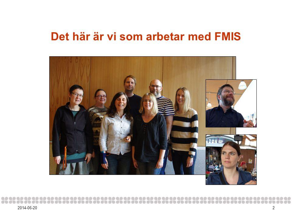 Det här är vi som arbetar med FMIS