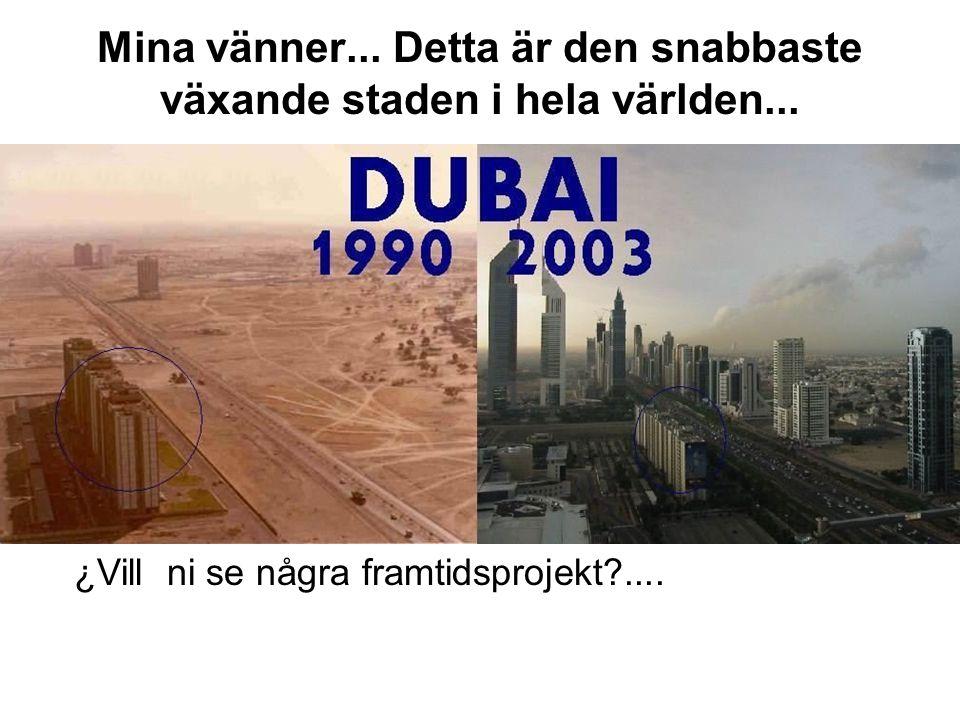 Mina vänner... Detta är den snabbaste växande staden i hela världen...