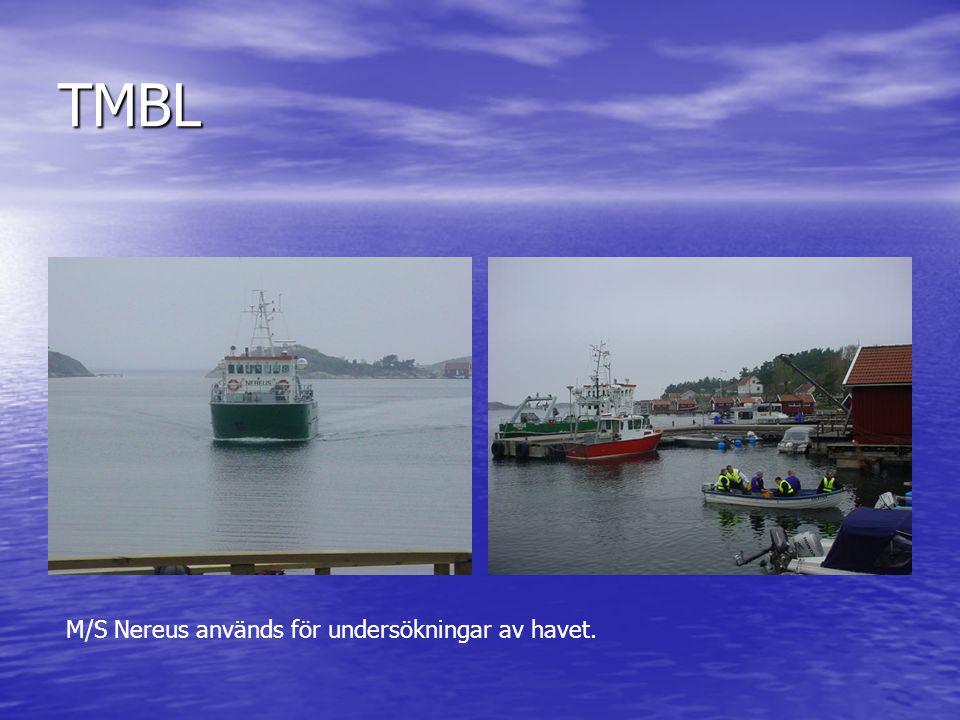 TMBL M/S Nereus används för undersökningar av havet.