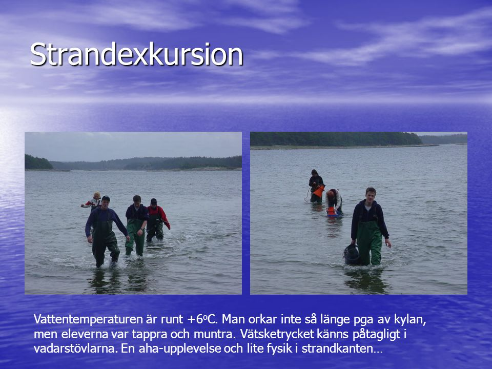 Strandexkursion