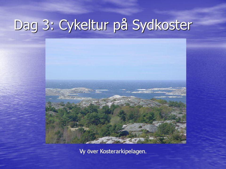 Dag 3: Cykeltur på Sydkoster