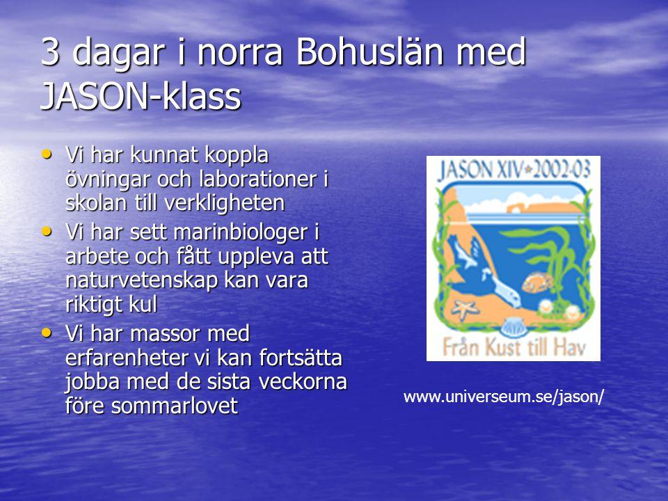 3 dagar i norra Bohuslän med JASON-klass