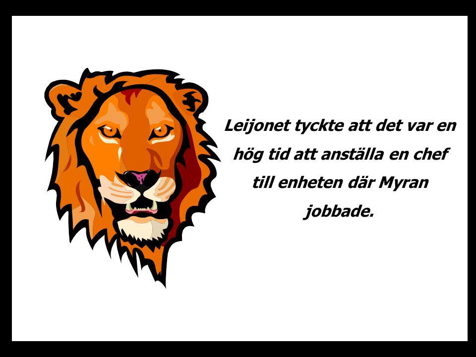 Leijonet tyckte att det var en hög tid att anställa en chef till enheten där Myran jobbade.