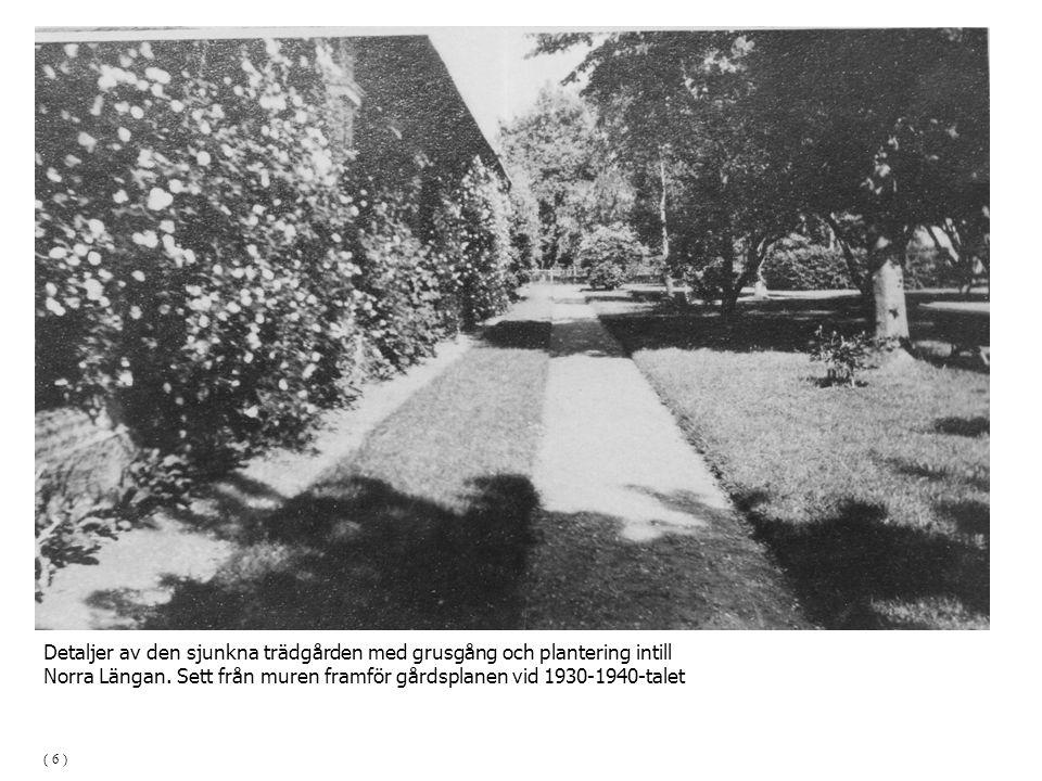 Detaljer av den sjunkna trädgården med grusgång och plantering intill
