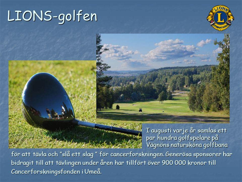 LIONS-golfen I augusti varje år samlas ett par hundra golfspelare på Vägnöns natursköna golfbana.