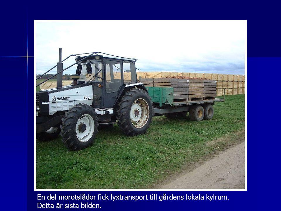 En del morotslådor fick lyxtransport till gårdens lokala kylrum