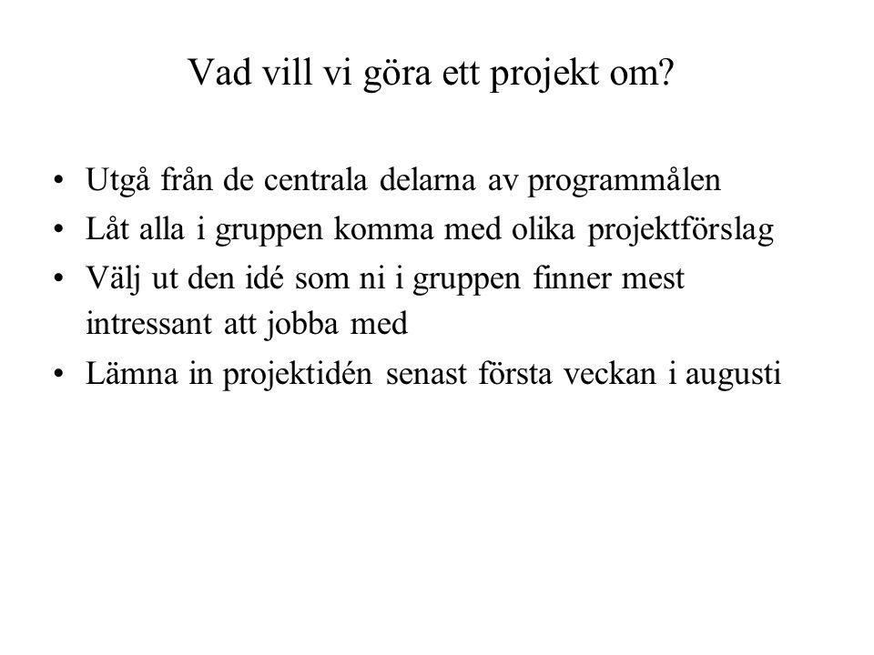 Vad vill vi göra ett projekt om