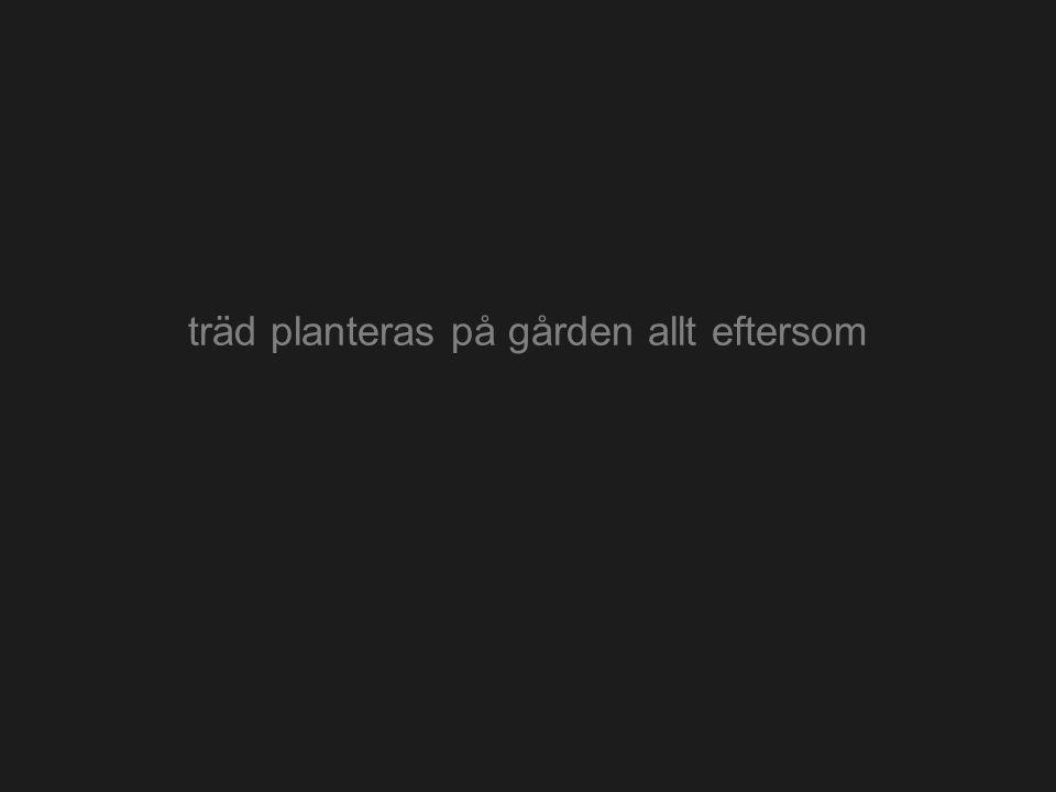 träd planteras på gården allt eftersom