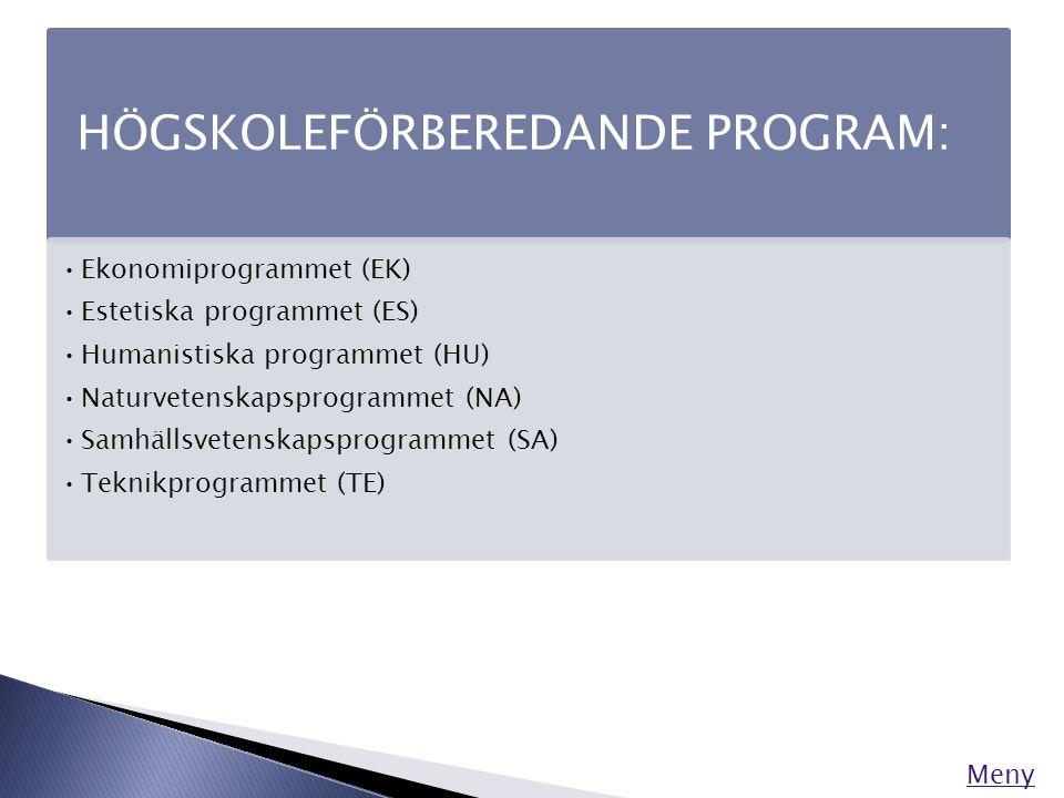 Särskilda varianter Förutom inriktningar kan det också finnas särskilda varianter inom de nationella programmen.