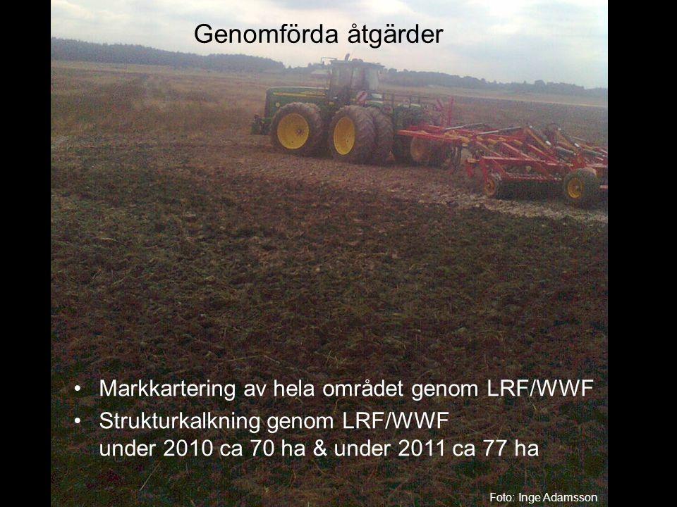 Genomförda åtgärder Markkartering av hela området genom LRF/WWF
