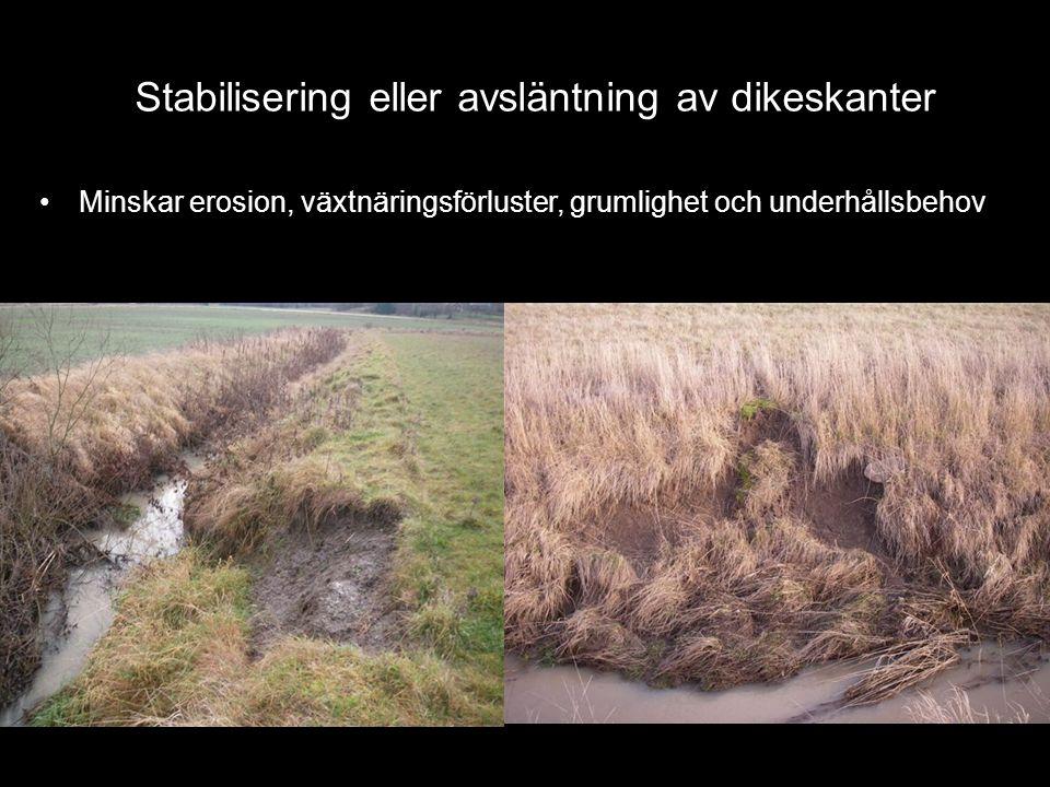 Stabilisering eller avsläntning av dikeskanter