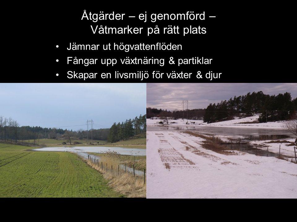Åtgärder – ej genomförd – Våtmarker på rätt plats