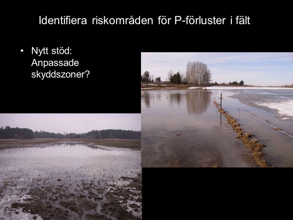 Identifiera riskområden för P-förluster i fält
