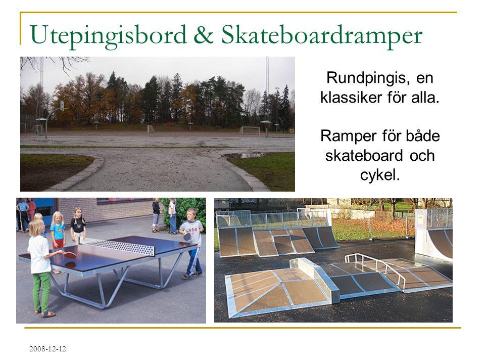 Utepingisbord & Skateboardramper