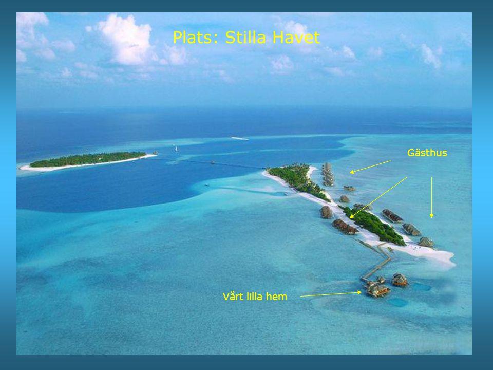 Plats: Stilla Havet Gästhus Vårt lilla hem