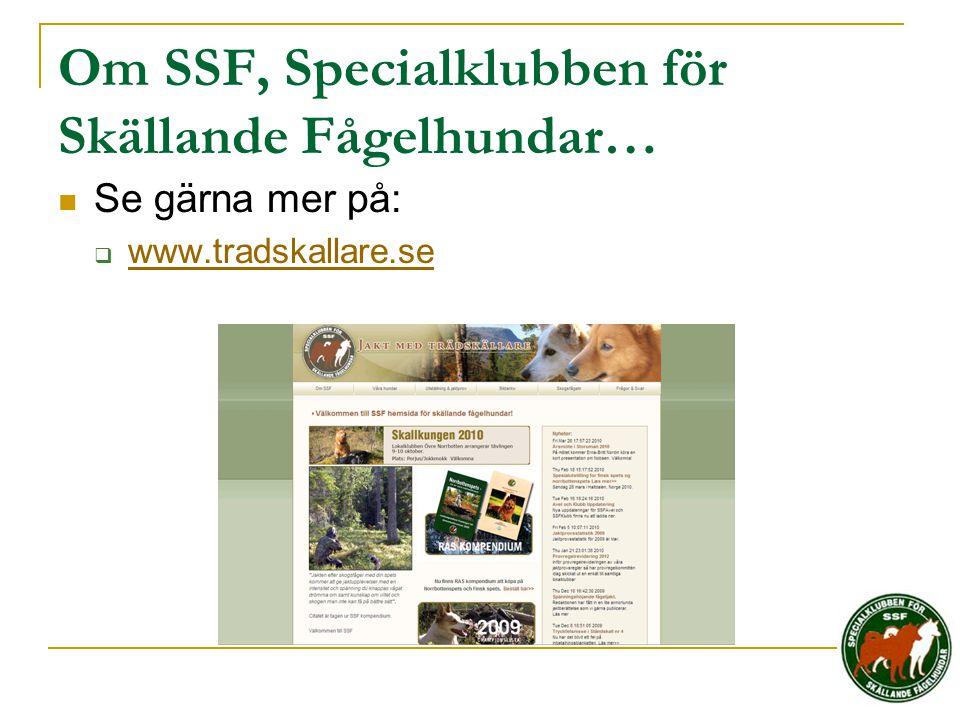 Om SSF, Specialklubben för Skällande Fågelhundar…