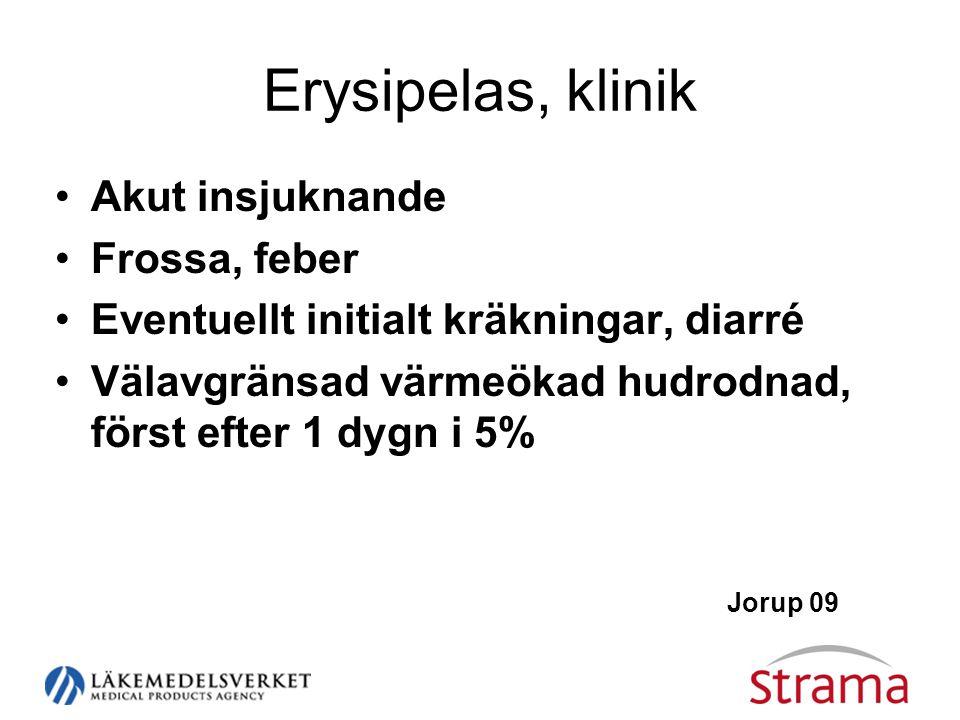 Erysipelas, klinik Akut insjuknande Frossa, feber
