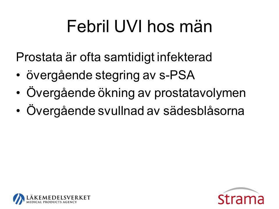 Febril UVI hos män Prostata är ofta samtidigt infekterad