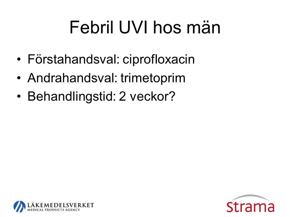 Febril UVI hos män Förstahandsval: ciprofloxacin