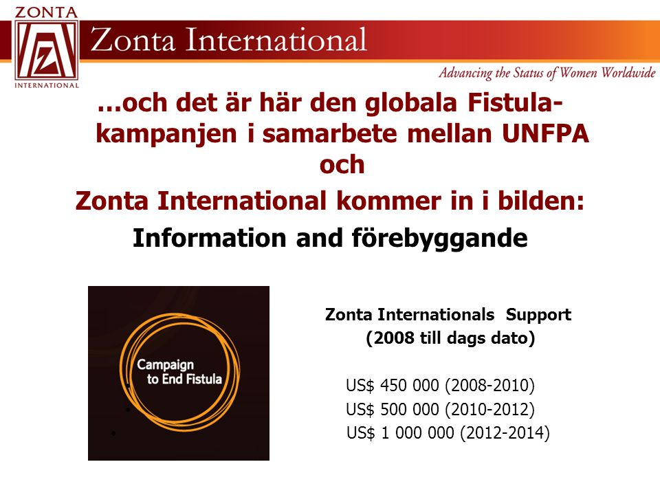 Zonta International kommer in i bilden: Information and förebyggande