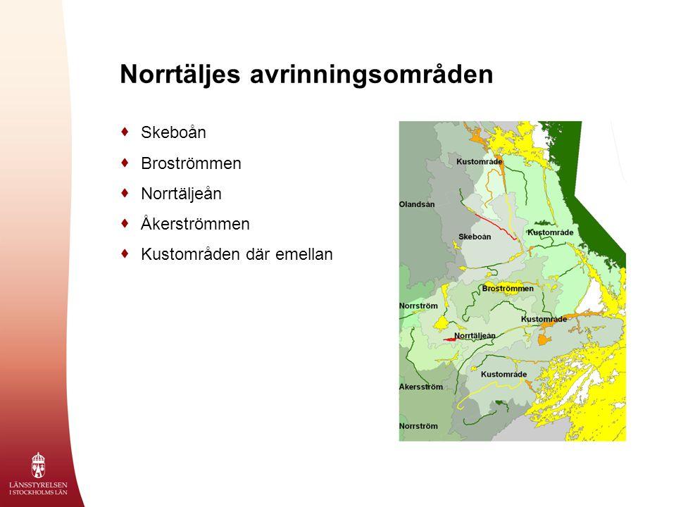 Norrtäljes avrinningsområden