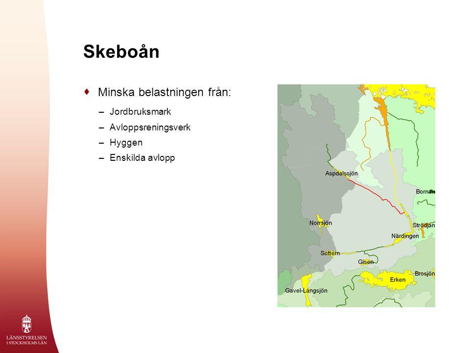 Skeboån Minska belastningen från: Jordbruksmark Avloppsreningsverk