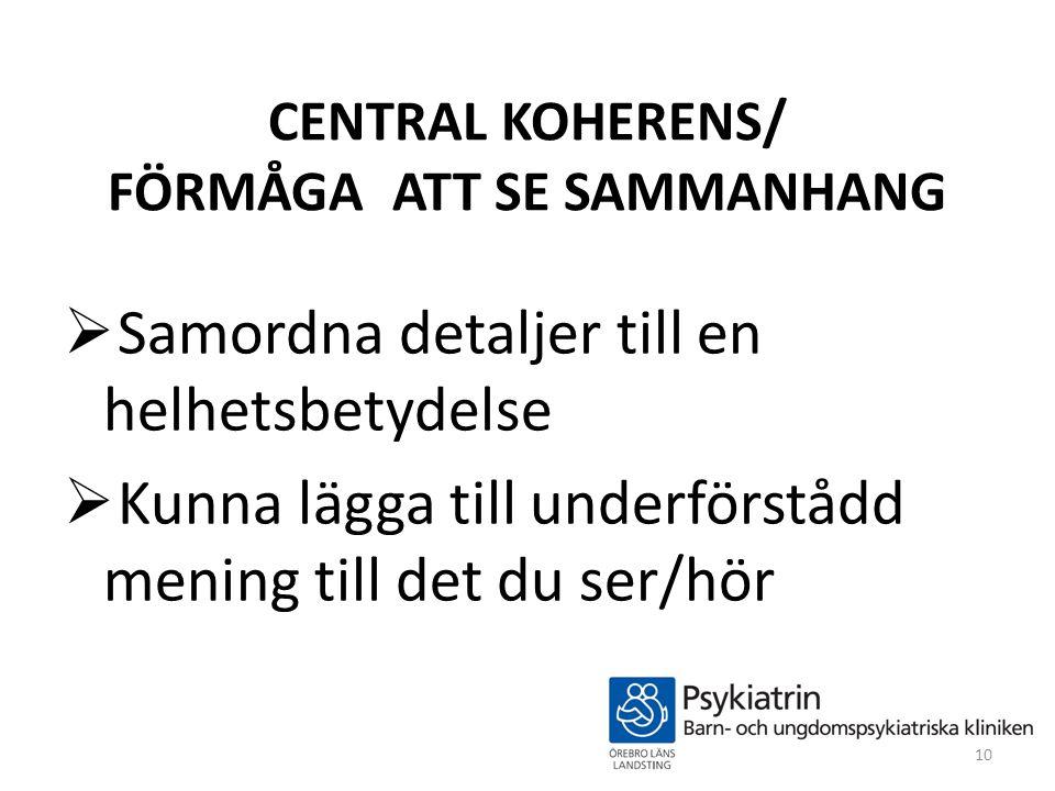 CENTRAL KOHERENS/ FÖRMÅGA ATT SE SAMMANHANG