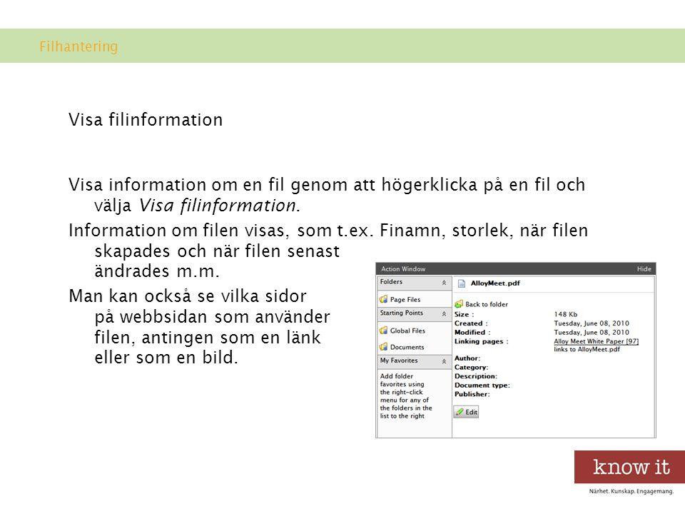 Filhantering Visa filinformation.