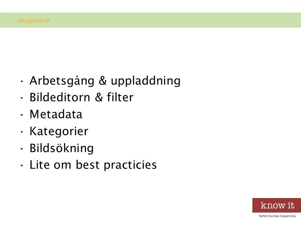 Arbetsgång & uppladdning Bildeditorn & filter Metadata Kategorier