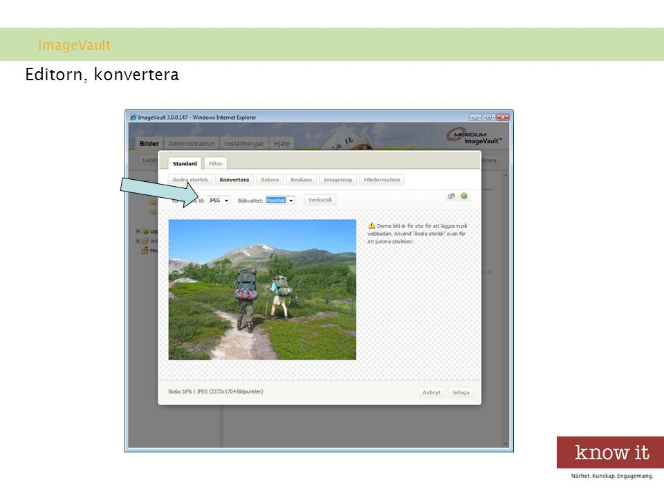ImageVault Editorn, konvertera