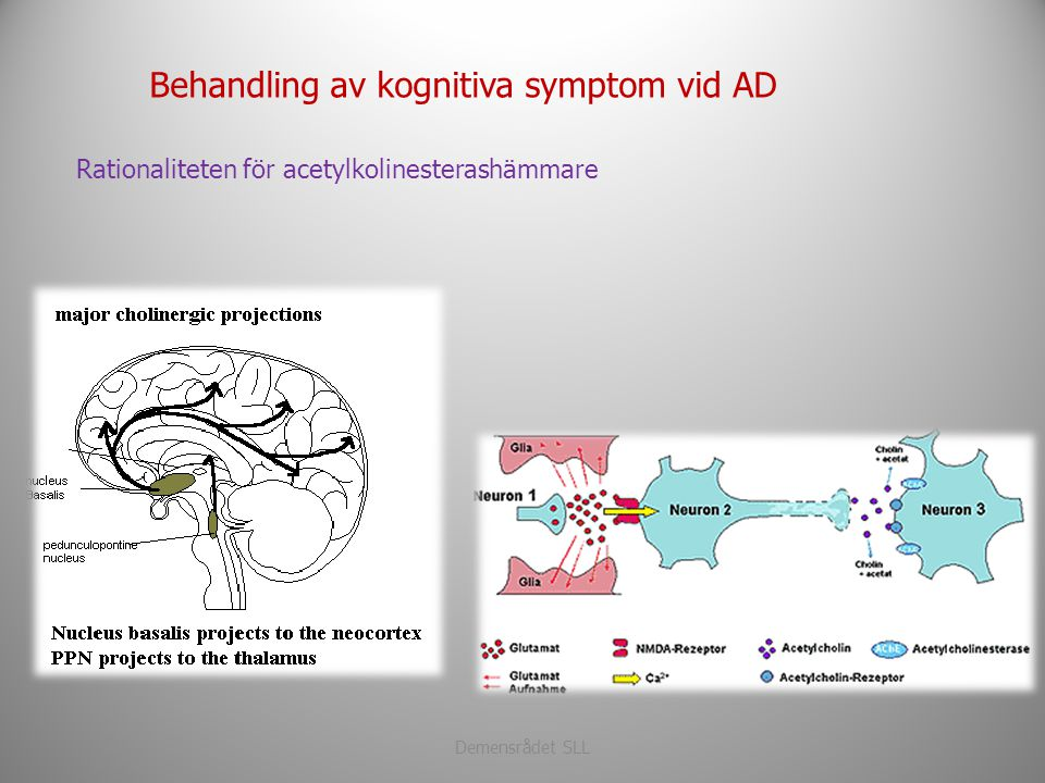 Behandling av kognitiva symptom vid AD