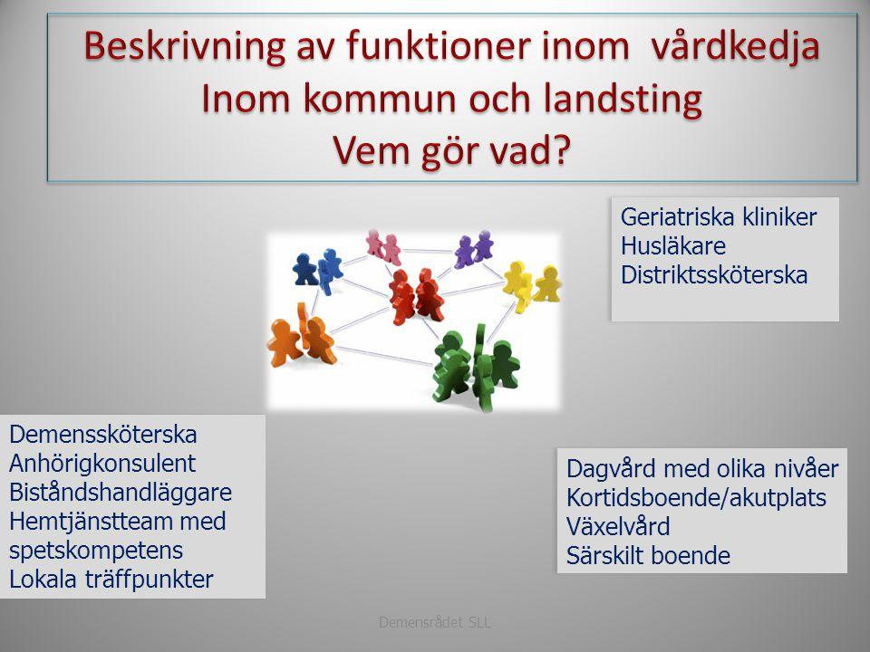 Beskrivning av funktioner inom vårdkedja Inom kommun och landsting
