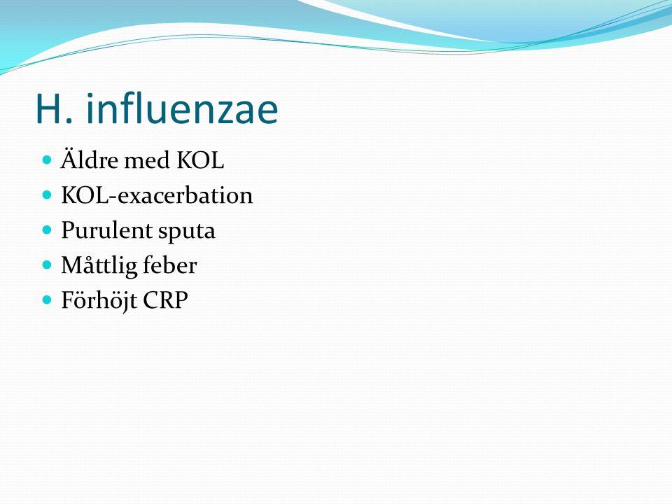 H. influenzae Äldre med KOL KOL-exacerbation Purulent sputa