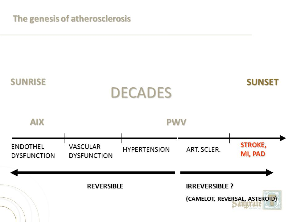 DECADES SUNRISE SUNSET AIX PWV The genesis of atherosclerosis