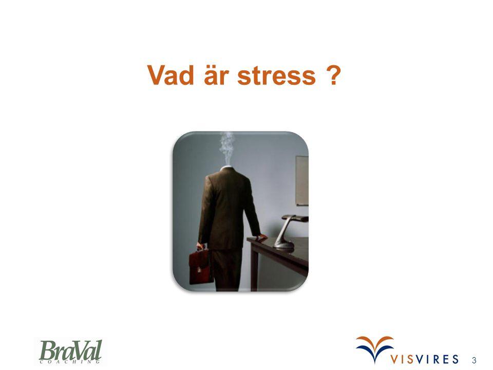 Vad är stress Berts Slide (3-3,5 min)