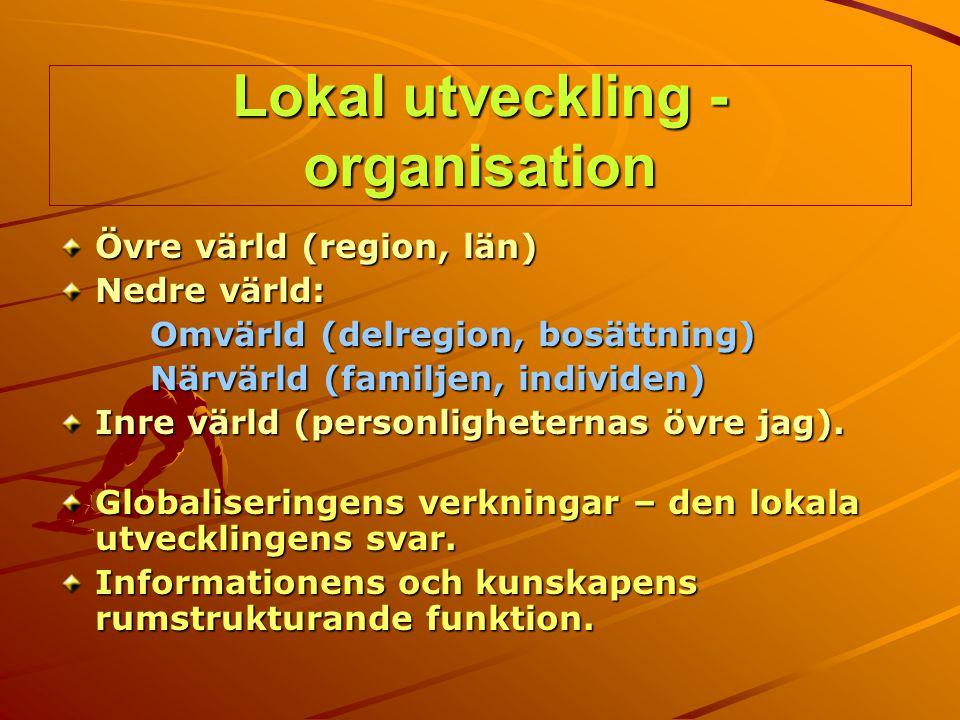 Lokal utveckling - organisation