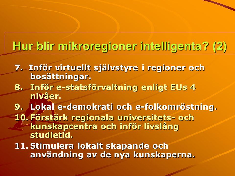 Hur blir mikroregioner intelligenta (2)