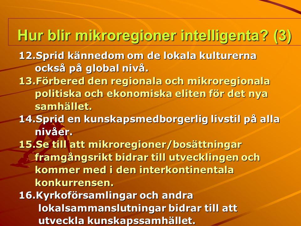 Hur blir mikroregioner intelligenta (3)